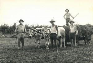 Foto storica della famiglia Luisetto
